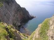 Hotel Al Bosco - Forio di Ischia-3