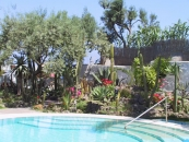 Hotel Monte Tabor - Casamicciola Terme-3