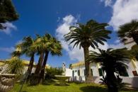 Hotel Punta Del Sole - Forio di Ischia-3