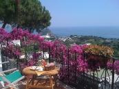 Hotel Bellavista - Forio di Ischia-1