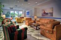 Hotel Flora - Ischia-2