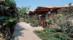 Hotel Villa Marinu - Forio di Ischia-1