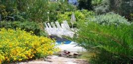 Hotel la Marticana - Ischia-2