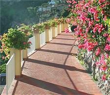 Hotel Weber Ambassador - Capri